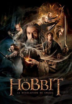 cover Le Hobbit : La désolation de Smaug